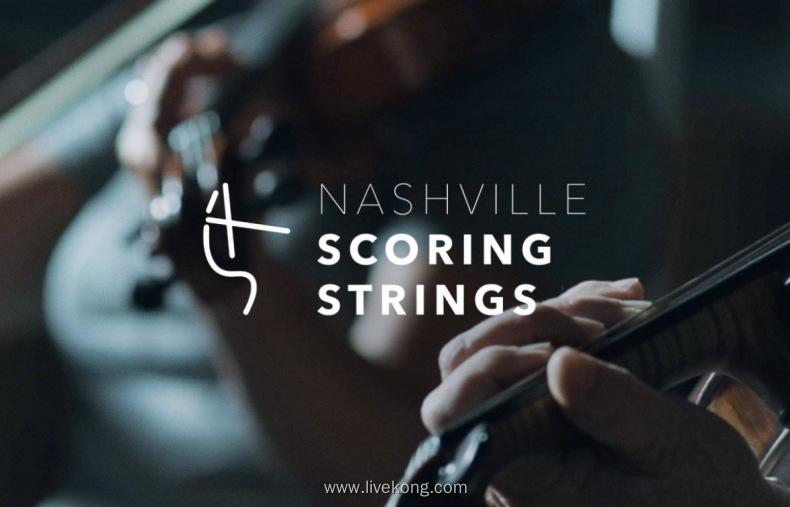 Audio Ollie Nashville Scoring Strings  NSS弦乐音源